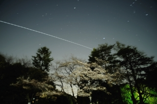 Iss20210317